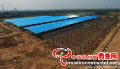 The mushroom project will be finished by the end of the year in Shandong Province, China
