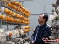 Gansu Longnan Inspection Team gave inspection acceptance to deep-processing mushroom project