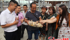 Yuguo Mushroom Company wins satisfactory foreign exchanges through export